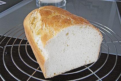 Goldener Toast 158