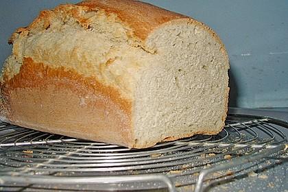 Goldener Toast 48