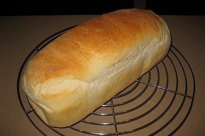 Goldener Toast 58