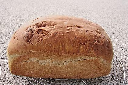 Goldener Toast 74