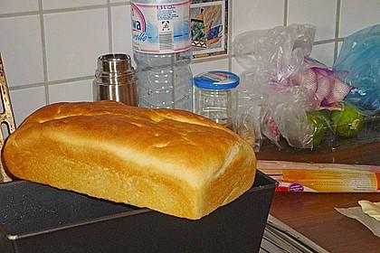 Goldener Toast 185