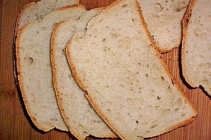 Goldener Toast 148