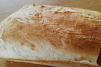 Goldener Toast 193