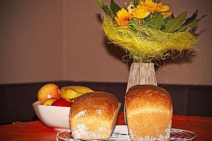 Goldener Toast 80