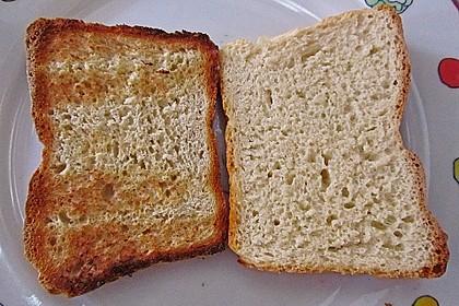 Goldener Toast 119