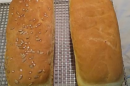 Goldener Toast 55