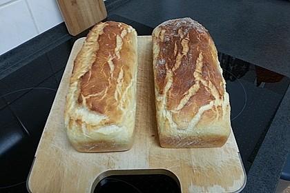 Goldener Toast 106