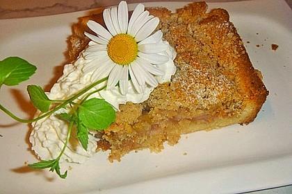 Rhabarberkuchen mit Streusel 5