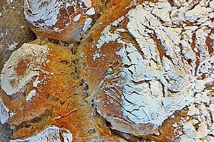 Kartoffelbrötchen mit genialer Kruste 24
