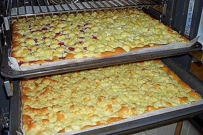 Streuselkuchen mit fruchtiger Füllung 26