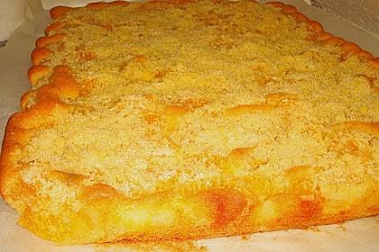 Streuselkuchen mit fruchtiger Füllung 70