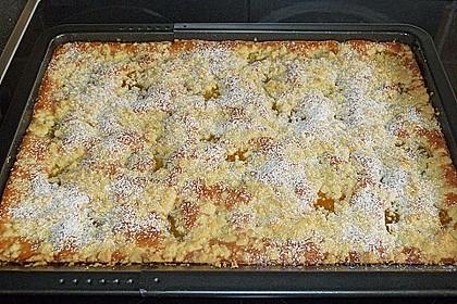 Streuselkuchen mit fruchtiger Füllung 4
