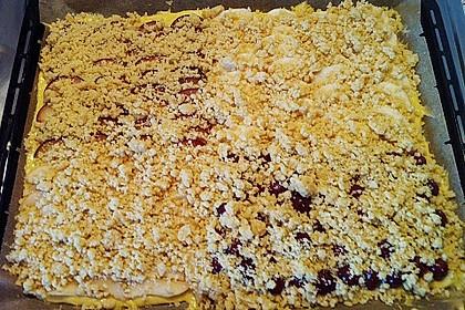 Streuselkuchen mit fruchtiger Füllung 67