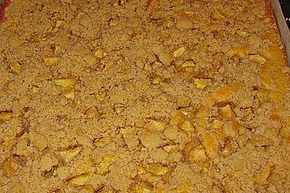 Streuselkuchen mit fruchtiger Füllung 50