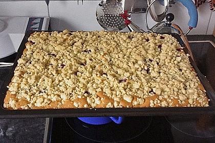 Streuselkuchen mit fruchtiger Füllung 25