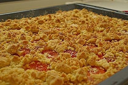 Streuselkuchen mit fruchtiger Füllung 9