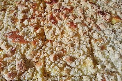Streuselkuchen mit fruchtiger Füllung 44