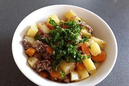 Hackfleisch - Kartoffel - Möhren - Eintopf 22