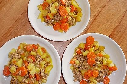Hackfleisch - Kartoffel - Möhren - Eintopf 7