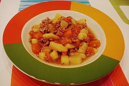 Hackfleisch - Kartoffel - Möhren - Eintopf 40