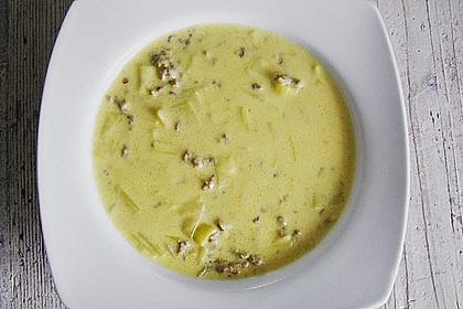 Käse-Lauch-Suppe mit Hackfleisch 119