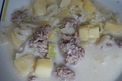 Käse-Lauch-Suppe mit Hackfleisch 163