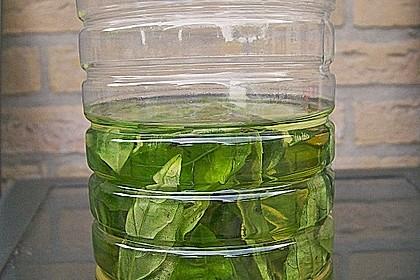 Basilikum - Knoblauchöl 4