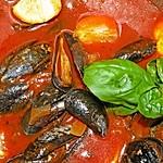 Miesmuscheln in pikanter, italienischer Tomaten-Knoblauchsauce