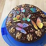 Veganer Schoko - Nuss - Kokos - Kuchen